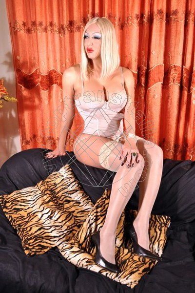 Laura La Max Transex VILLORBA 3203571032